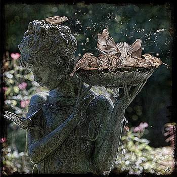 Chris Lord - The Bird Bath