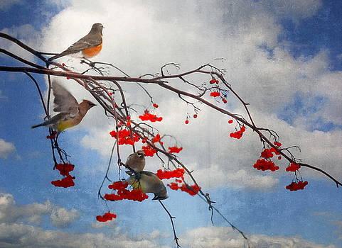 Andrea Kollo - The Bird Tree