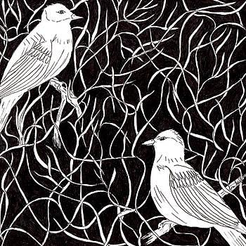 The Birds by Lou Belcher