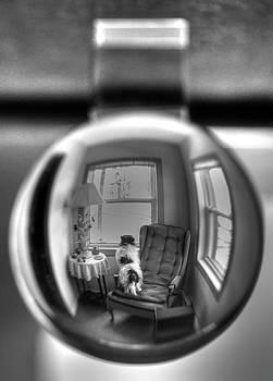 The black and white globe dog by Jeffrey Platt