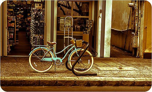 The Blue Bike by David Attenborough