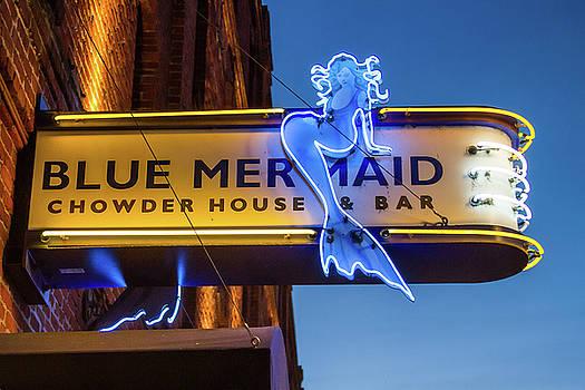 The Blue Mermaid by Bonnie Follett
