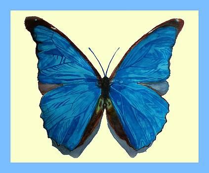 The Blue Morpho Butterfly by Ramon Bendita
