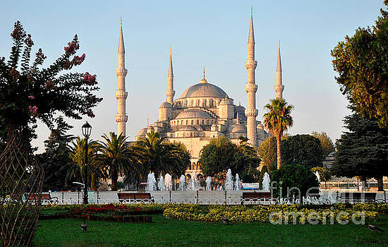 Andrew Dinh - The Blue Mosque