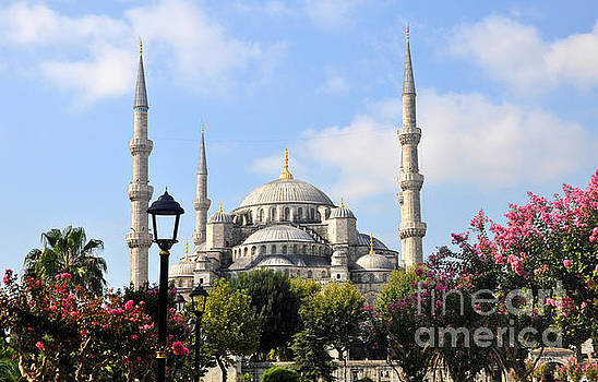 Andrew Dinh - The Blue Mosque Close Up