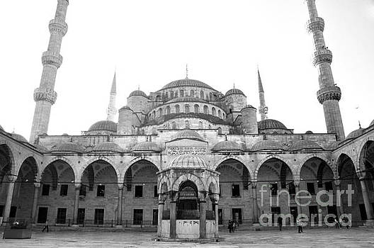 Andrew Dinh - The Blue Mosque Square