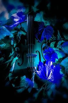 The blue world by Gerald Kloss