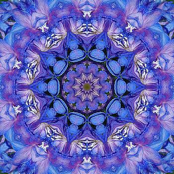 The blues - Sky blue and violet Delphinium mandala by R V James