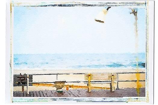 The Boardwalk Shower by Eddy Mann