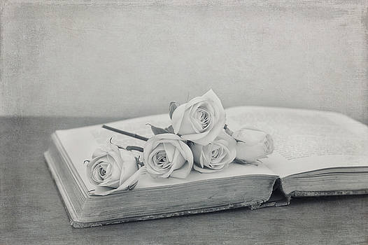 Kim Hojnacki - The Book of Love