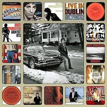 The Boss Mr Bruce Springsteen by John S