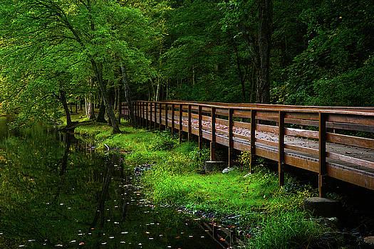 The Bridge at Wolfe Park by Karol Livote