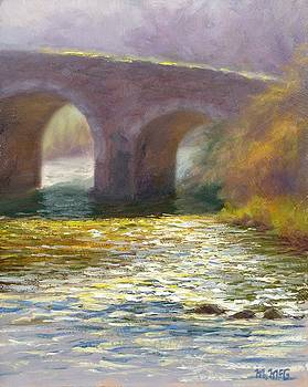 The Bridge Clonegal by Michael McGuire