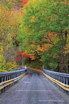 The Bridge by Philip Neelamegam