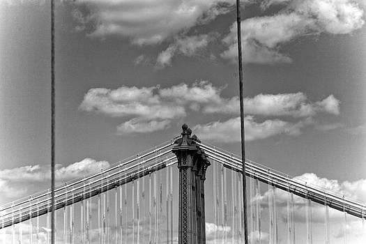 The Bridge  by Robin Cuervo