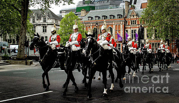The British Cavalry by Marina McLain