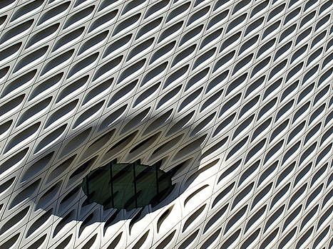 The Broad  by Mary Capriole