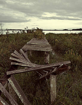 The Broken Dock by Ron Dubin