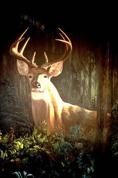 The Buck by Michael John Cavanagh