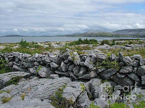 The Burren by Joe Cashin