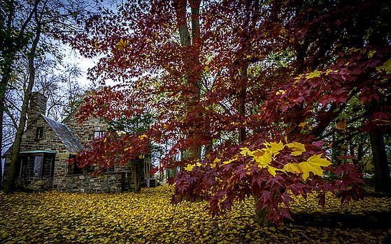Francisco Gomez - The Cabin In Autumn