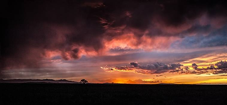 After the Storm by John Dickinson