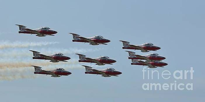 The Canadian Forces Snowbirds by Tony Lee