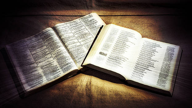 The Canvas Of Gods Word by Philip A Swiderski Jr