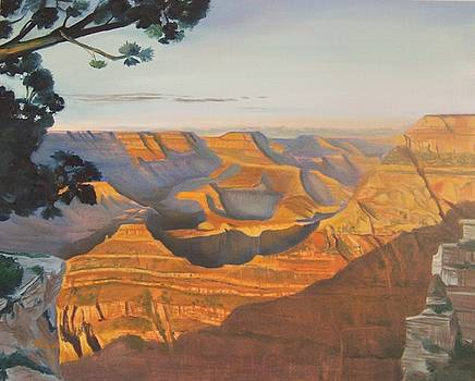 The Canyon by Donna Hays