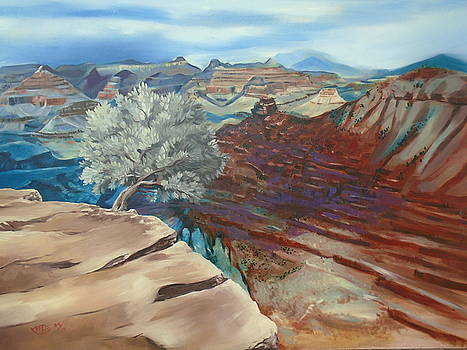 The Canyon by Michael Harris