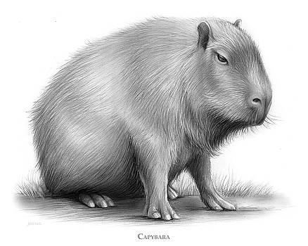 Greg Joens - The Capybara