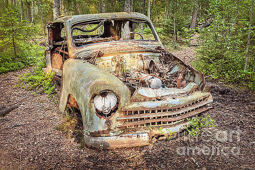 The Car in the Forest by Martin Bergsma