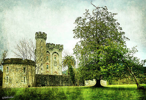 Weston Westmoreland - The Castle and the Magnolia - Vintage