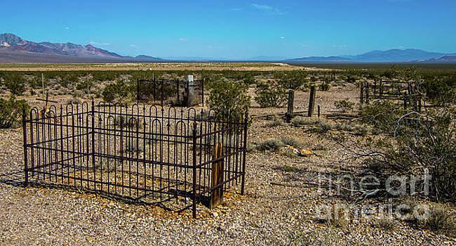 Stephen Whalen - The Cemetery
