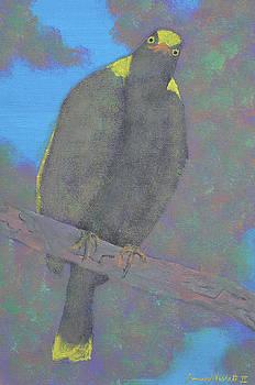 The Cheshire Bird by James Violett II