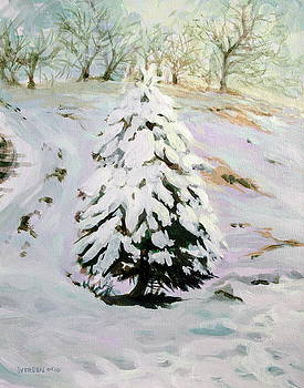 The Chirstmas Tree by Jill Iversen