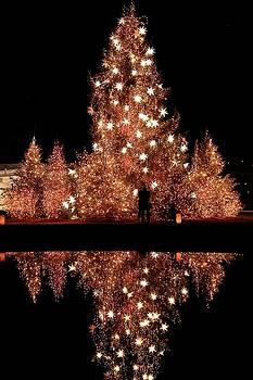 The Christmas Kiss by Carol Montoya