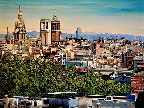The Church's of Barcelona by Robert W Cook