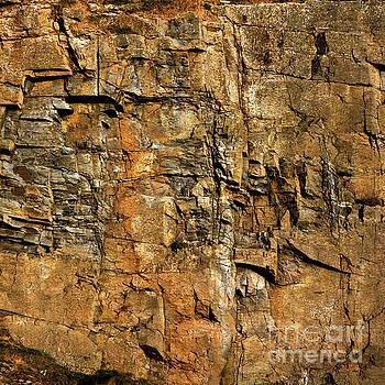 The Cliff Side by Liz Alderdice