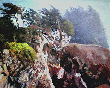 The Cliffs at Sea Ranch by Char Wood