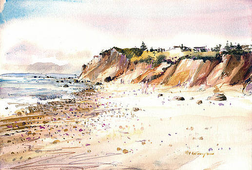 The Cliffs of Aquinnah by P Anthony Visco