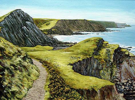 The Cliffs of Hartland by Mark Woollacott