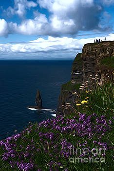 The cliffs of Moher  by Andrew Michael