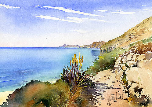 The Coast From San Pedro by Margaret Merry