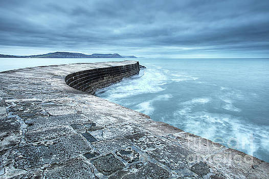 The cobb, lyme regis,  by Martin Williams