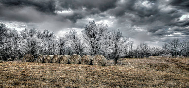 The Cold by Garett Gabriel