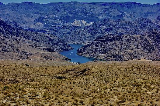 The Colorado River  by Lorna Maza