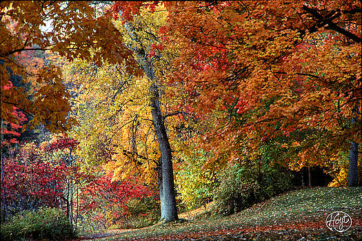 The Colors of Letchworth by Brad Hoyt