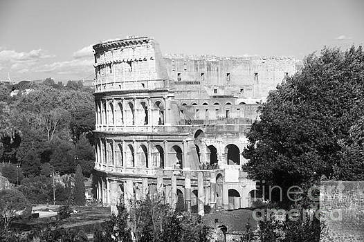 The Colosseum black and white by Stefano Senise