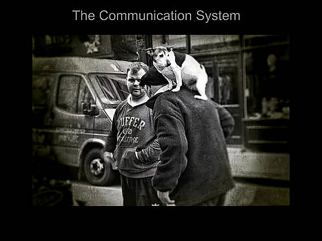 The Communication System by Nicole Frischlich